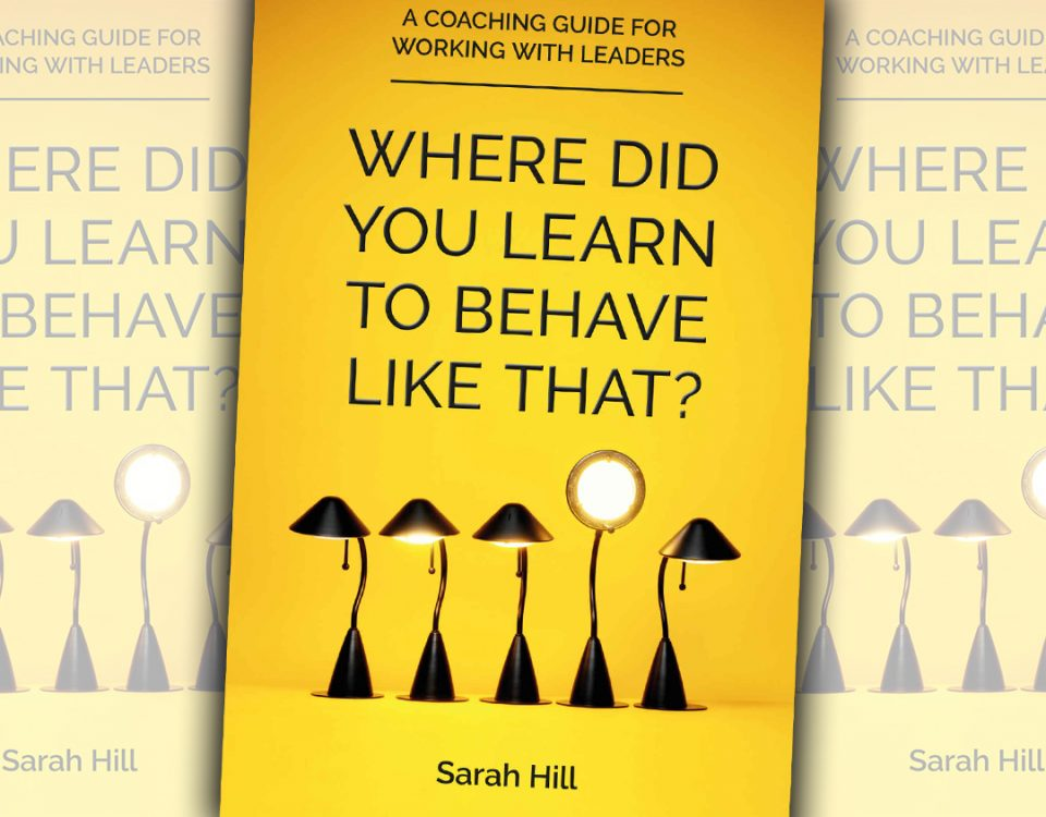 Sarah Hill book, Where Did You Learn To Behave Like That?