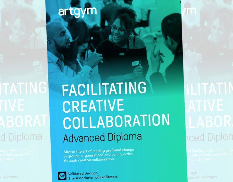 Artgym Advanced Diploma prospectus